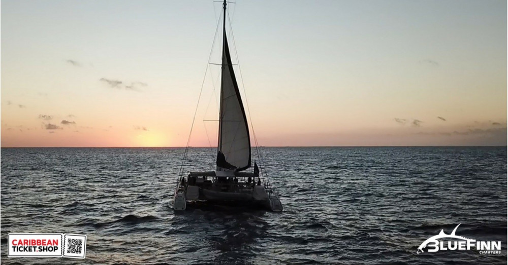 Catamaran Sunset Trip on BlueFinn